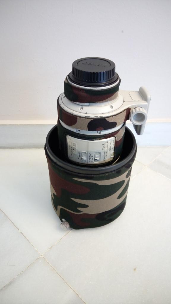 EF 300mm F/2.8L